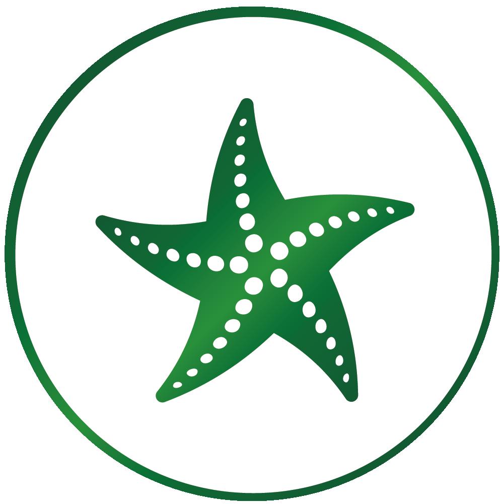 Starfish Export | TracSystems